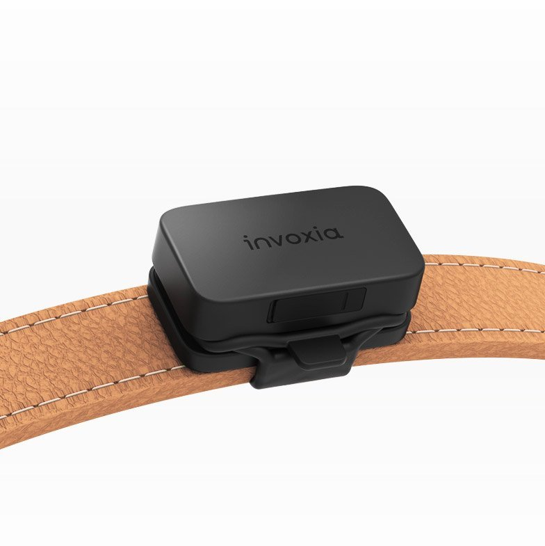 invoxia – GPS Pet Tracker